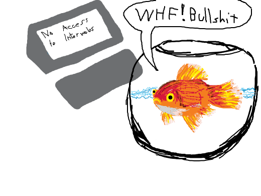 the fish doesn´t know that his hotel has no internet included, and he already paid in advance!