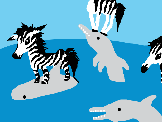 Dolphins play with zebras