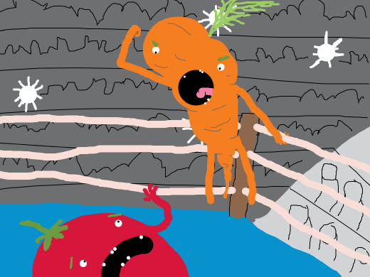 Wrestler carrot about to attack.
