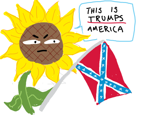 racist sunflower