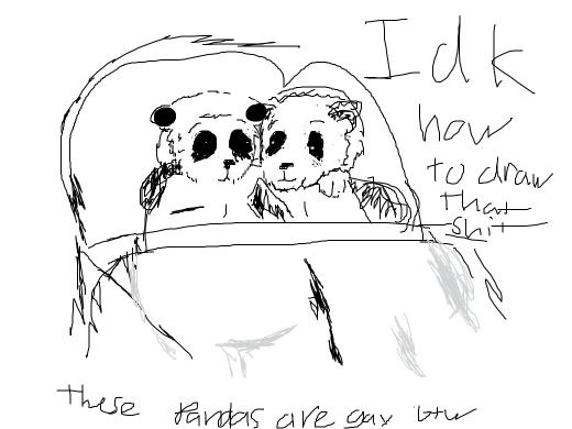 Two pandas fucking