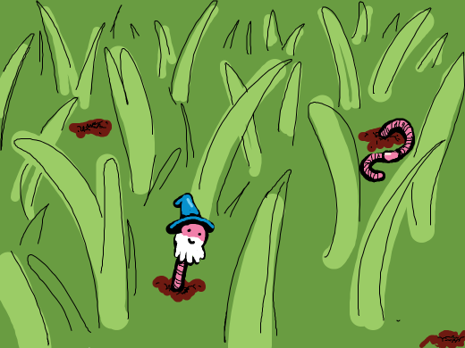 wizard of worm holes