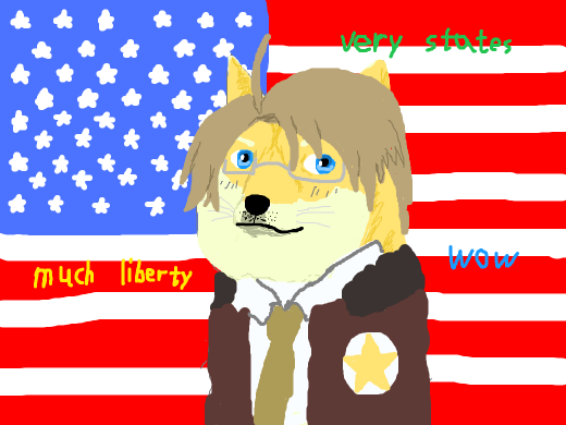 Merica: wow, very states, much liberty