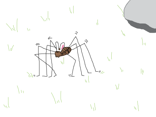 that daddy longlegs with bunny ears