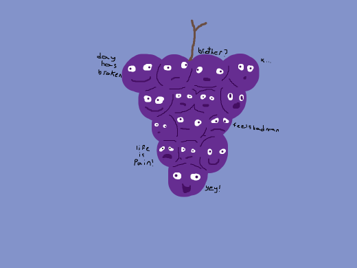 grapes conjointed together to form a berry