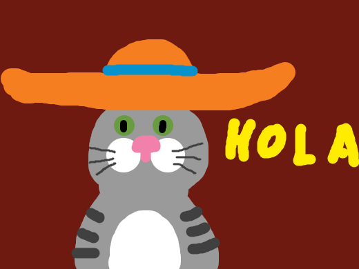 A kitten with a sombrero